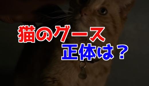 キャプテンマーベル猫のグースの正体は?フューリーが片目を失った原因?
