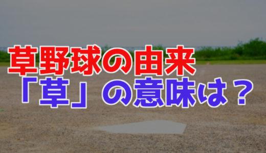 草野球の名前の由来(語源)や意味とは?なぜ「草」の字が使われた?